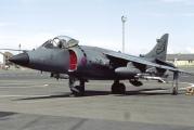 Royal Navy XZ494 image