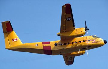 115456 - Canada - Air Force de Havilland Canada CC-115 Buffalo