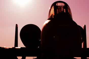 81-0954 - USA - Air Force Fairchild A-10 Thunderbolt II (all models)