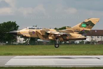 ZK113 - Royal Air Force Panavia Tornado - IDS