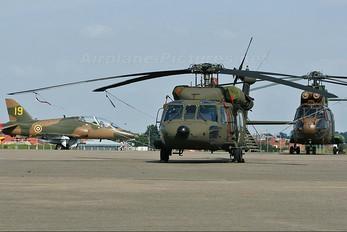 87-24584 - USA - Army Sikorsky UH-60A Black Hawk