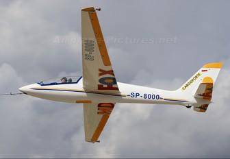 SP-8000 - Private Margański & Mysłowski MDM-1 Fox series