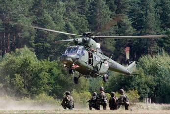 0604 - Poland - Army PZL W-3 Sokół