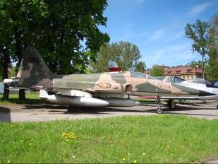 00878 - Vietnam - Air Force Northrop F-5E Tiger II