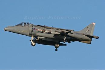 ZG503 - Royal Air Force British Aerospace Harrier GR.9