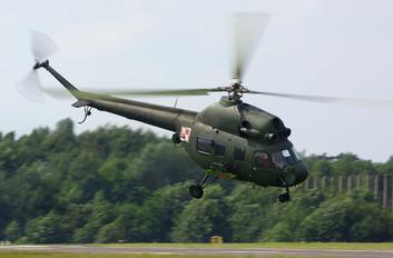 6024 - Poland - Army Mil Mi-2