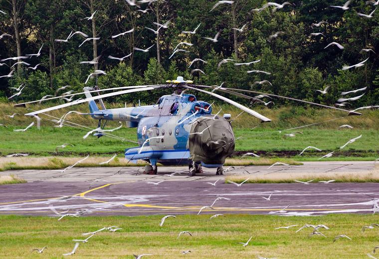 Poland - Navy 1010 aircraft at Off Airport - Poland