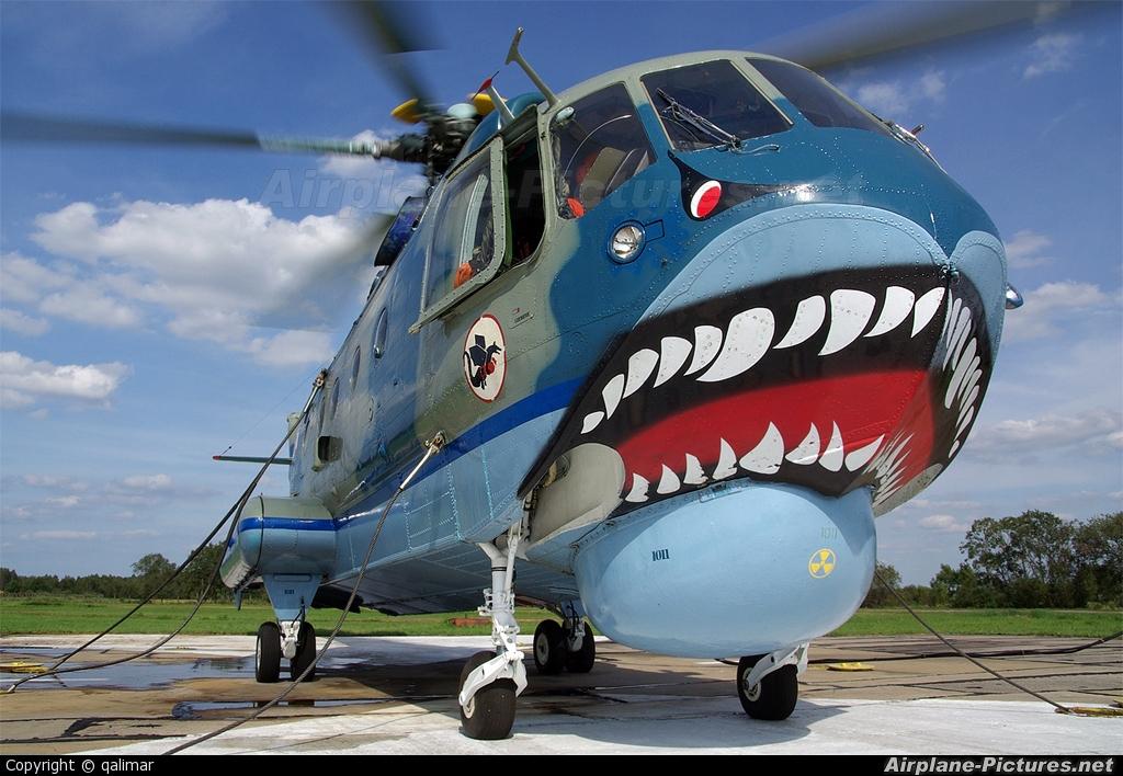 Poland - Navy 1011 aircraft at Off Airport - Poland