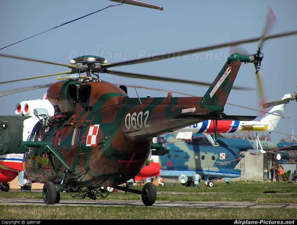 Poland - Army 0602 aircraft at Off Airport - Poland