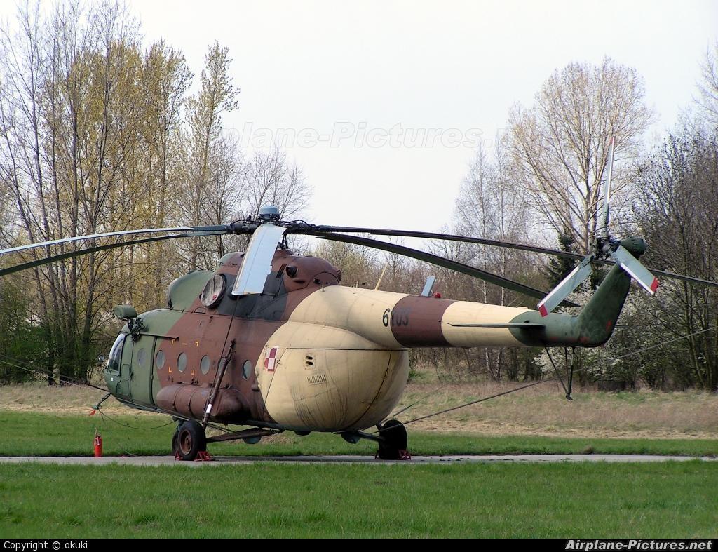 Poland - Army 6103 aircraft at Off Airport - Poland