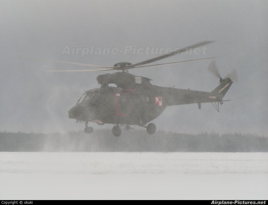 Poland - Army 0612 aircraft at Off Airport - Poland