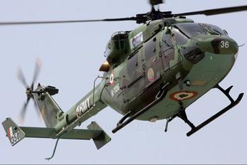 IA-1136 - India - Army Hindustan Dhruv