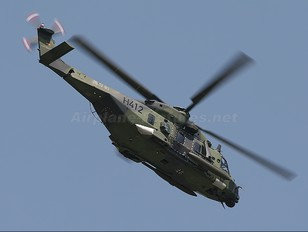98+93 - Germany - Air Force NH Industries NH-90 TTH