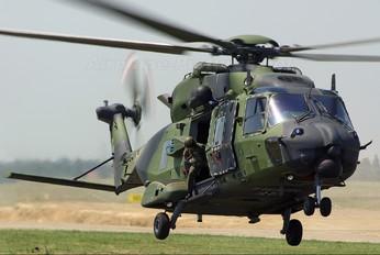 - - Germany - Army NH Industries NH-90 TTH