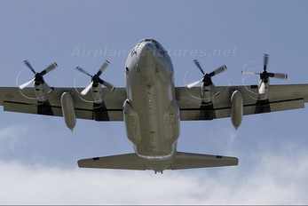 84007 - Sweden - Air Force Lockheed Tp84 Hercules