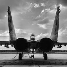 42 - Poland - Air Force Mikoyan-Gurevich MiG-29UB