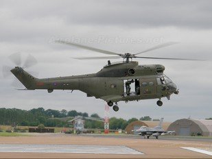 ZJ957 - Royal Air Force Westland Puma HC.2