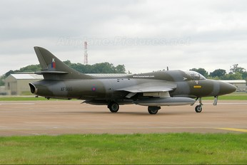 G-BZSF - Hawker Hunter Aviation Hawker Hunter T.8