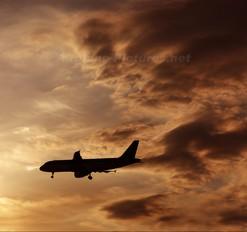 - - Aer Lingus Airbus A320
