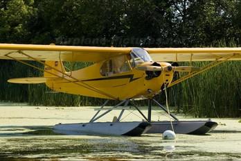 N62088 - Private Piper L-4 Cub