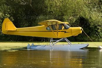 N295T - Private Piper PA-18 Super Cub