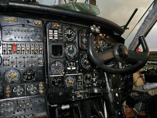 UP-AN205 - Berkut State Air Company Antonov An-12 (all models)