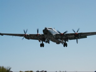 - - South Africa - Air Force Museum Avro 716 Shackleton MR.3
