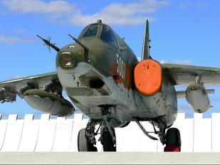 5007 - Czech - Air Force Sukhoi Su-25K