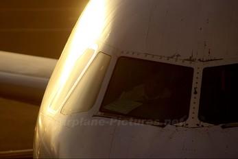 N439UA - Ted Airbus A320