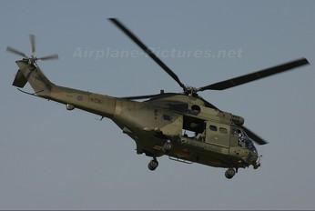 XW198 - Royal Air Force Westland Puma HC.1