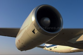 ZS-OSI - African International Airways Douglas DC-8-62CF