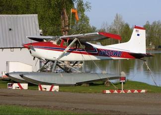 N850WB - Private Cessna 185 Skywagon