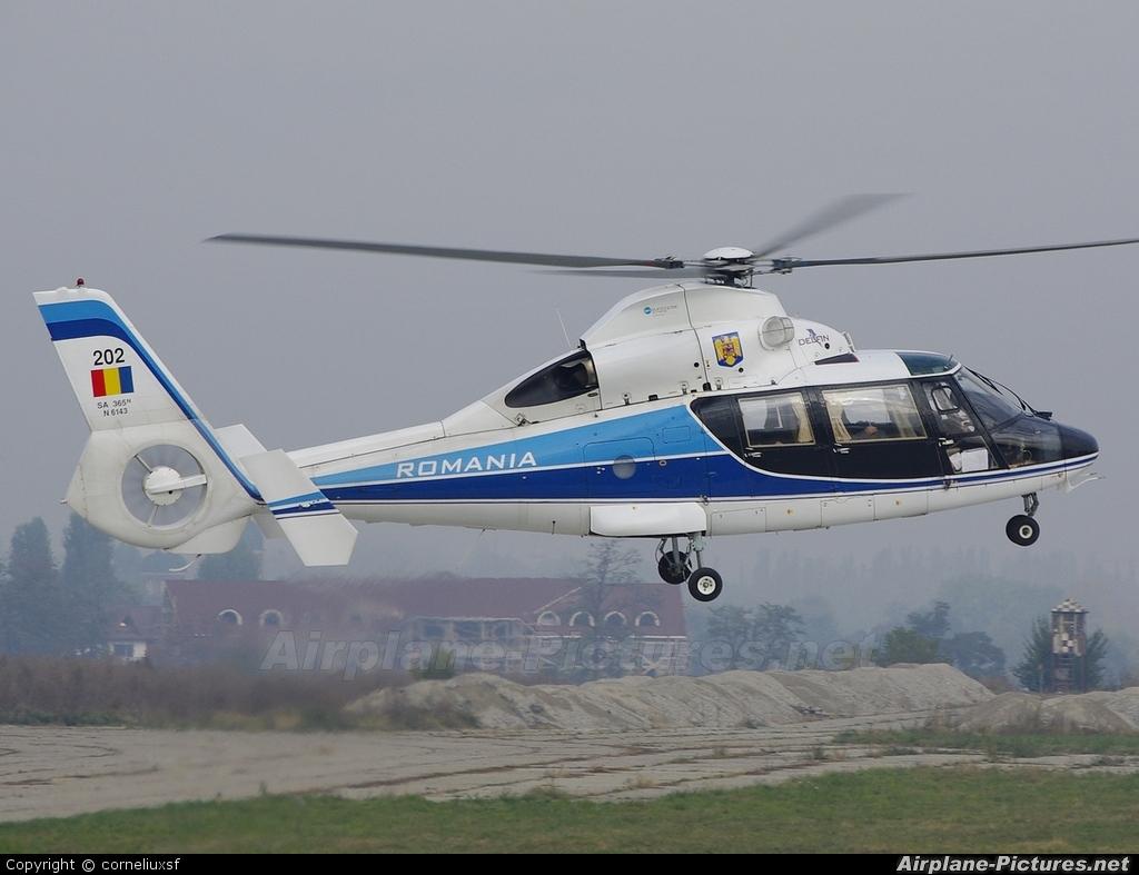 Romania - Air Force 202 aircraft at Bacau