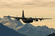 8T-CC - Austria - Air Force Lockheed Hercules C.1P aircraft