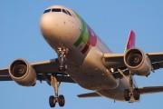 CS-TTP - TAP Portugal Airbus A319 aircraft