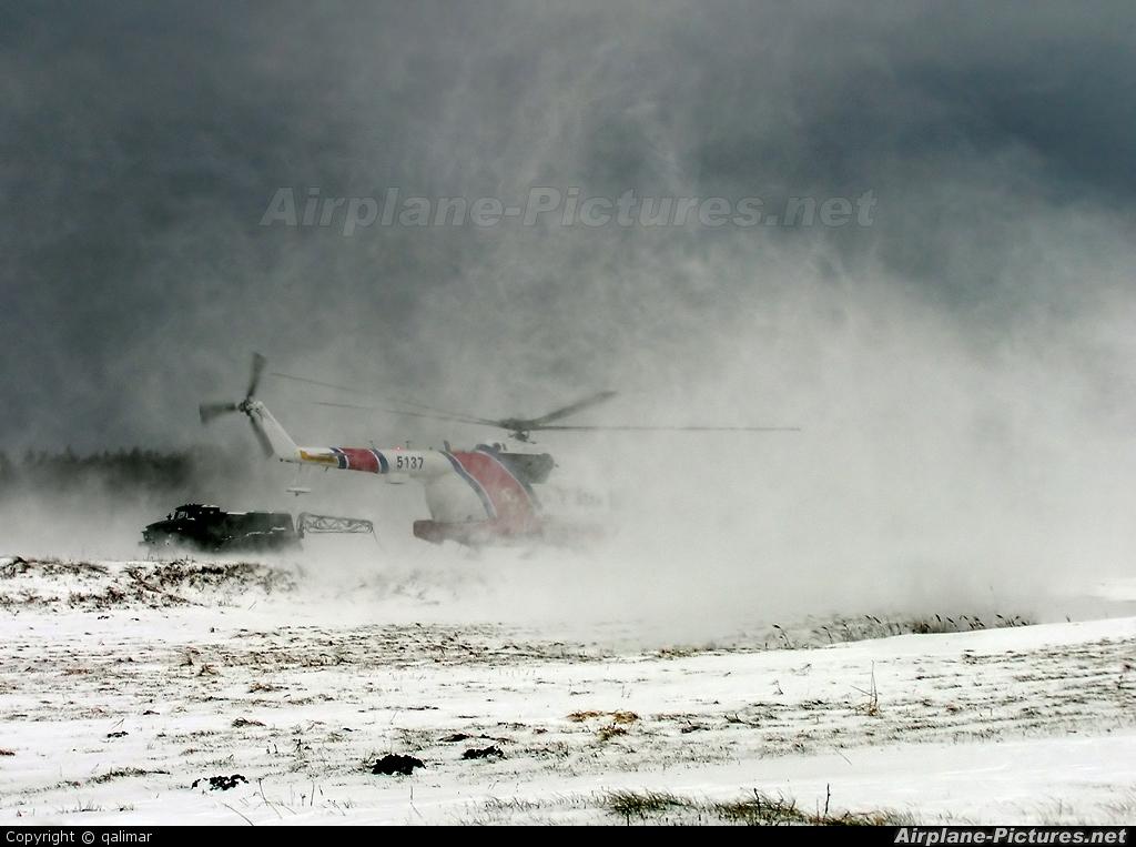 Poland - Navy 5137 aircraft at Off Airport - Poland