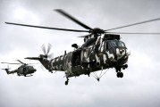 ZF115 - Royal Navy Westland Sea King HC.4 aircraft
