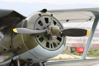 ZK-JKM - Private Polikarpov I-153 Chaika