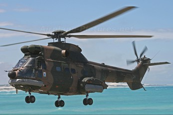 1200 - South Africa - Air Force Atlas (Denel) Oryx