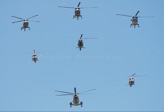 - - France - Navy Westland Lynx