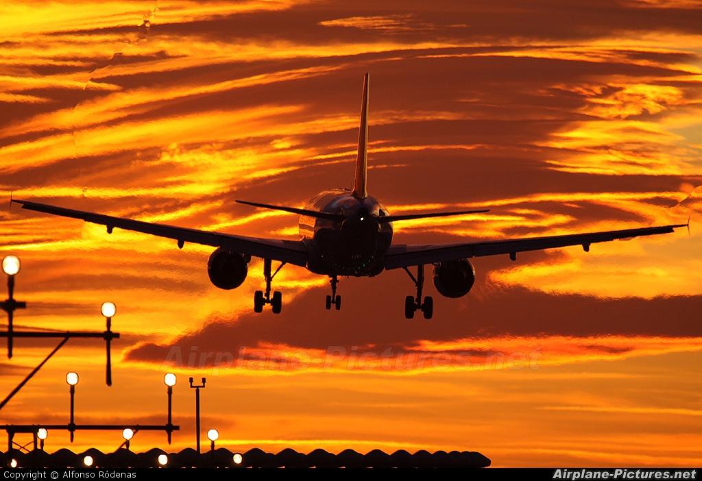 Lufthansa D-AIRP aircraft at Barcelona - El Prat