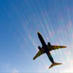 EI-DCS - Ryanair Boeing 737-800