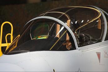 05 - South Africa - Air Force SAAB JAS 39D Gripen