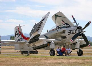 NX39606 - Private Douglas AD-4N Skyraider