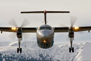 OE-LTM - Austrian Airlines/Arrows/Tyrolean de Havilland Canada DHC-8-300Q Dash 8