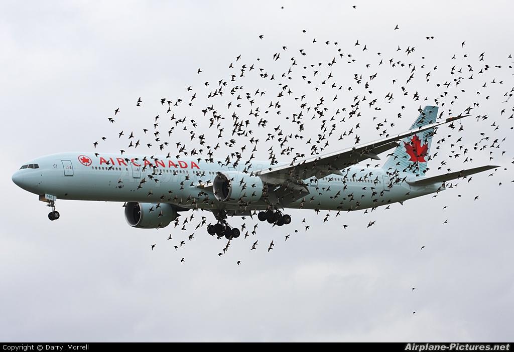 Air Canada C-FIVQ aircraft at London - Heathrow