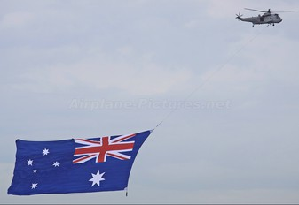 N16-238 - Australia - Navy Westland Sea King Mk.50A