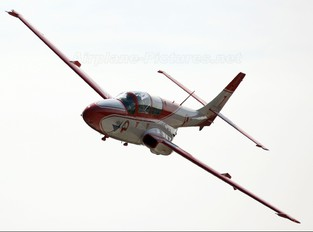 2007 - Poland - Air Force: White & Red Iskras PZL TS-11 Iskra