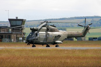 ZJ956 - Royal Air Force Westland Puma HC.1