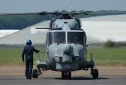 ZD265 - Royal Navy Westland Lynx HMA.8 aircraft